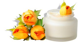 flowers and cream